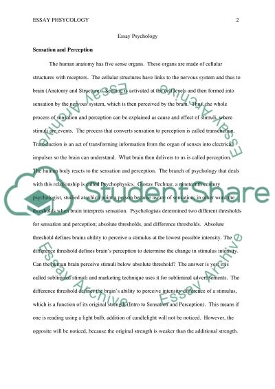 summary essay example