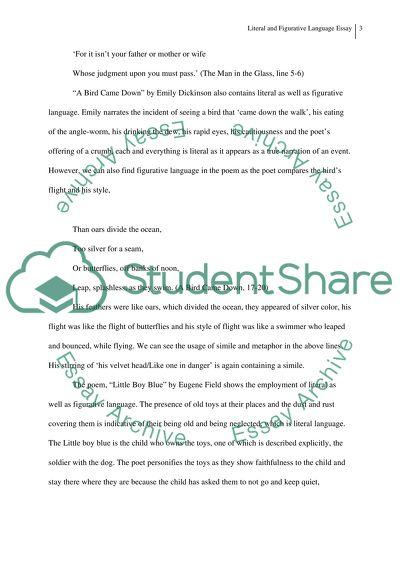 Literal and Figurative Language Essay
