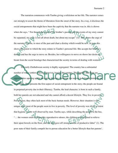 Essay on Tambus Story