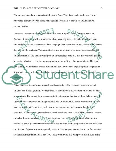 Influenza communication campaign Essay example