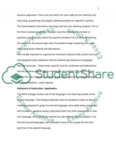 Planning For Clarity (Language Learning) essay example